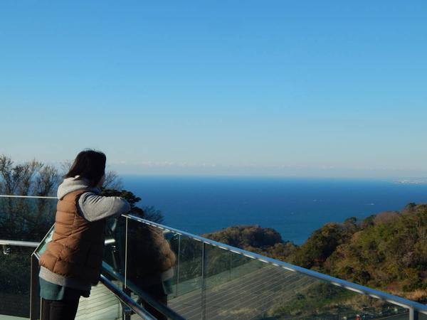 太平洋側の眺め