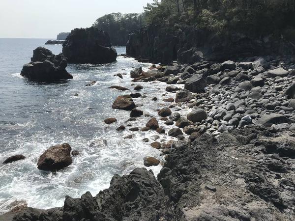 海洋公園まで軽くハイキング