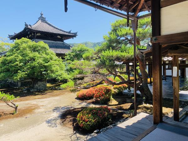 舎利殿と本庭