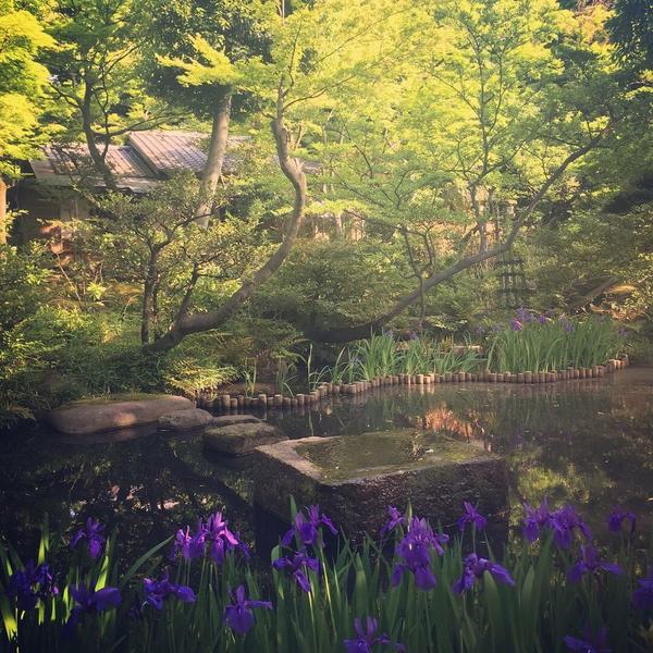 東京都心とは思えない風景