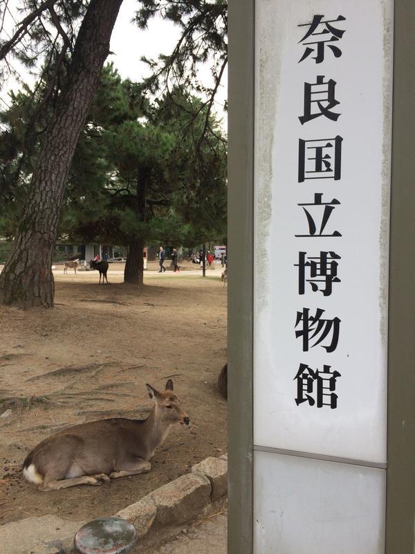 鹿と 案内看板 🦌