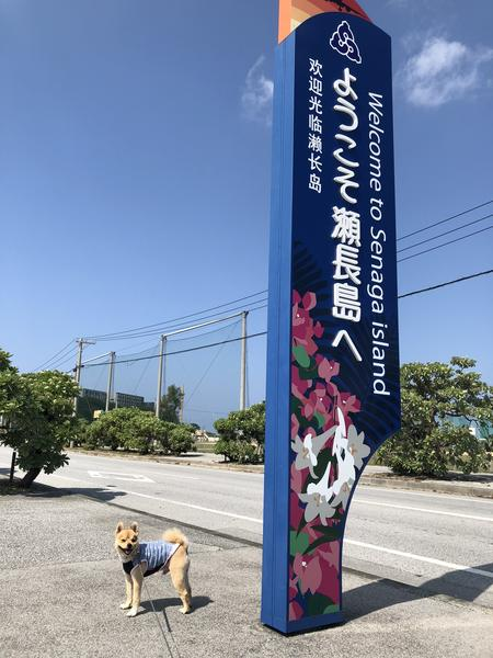 瀬長島への入口
