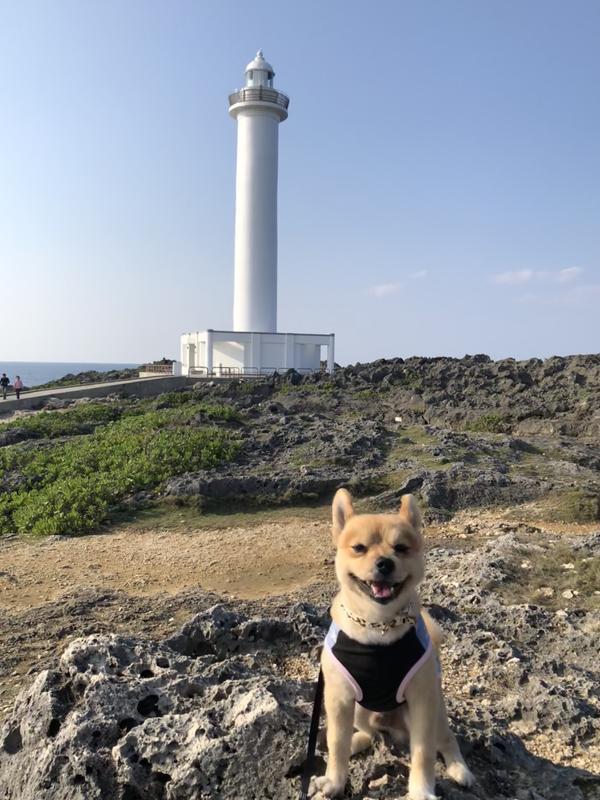 バックには残波岬灯台