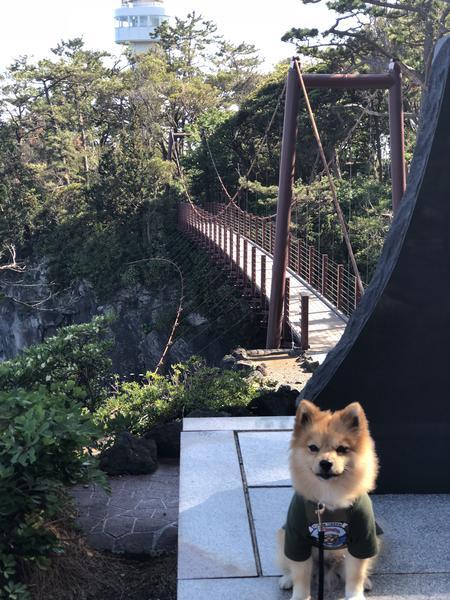 吊り橋と灯台