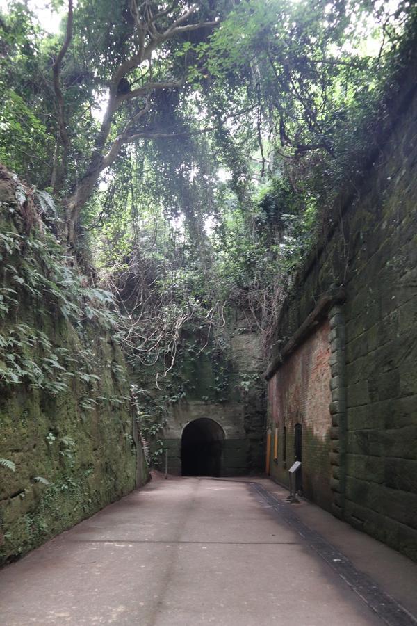 トンネルを出て振り返ってみた景色