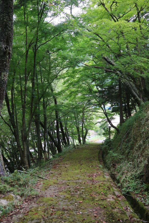お寺への道は山の中