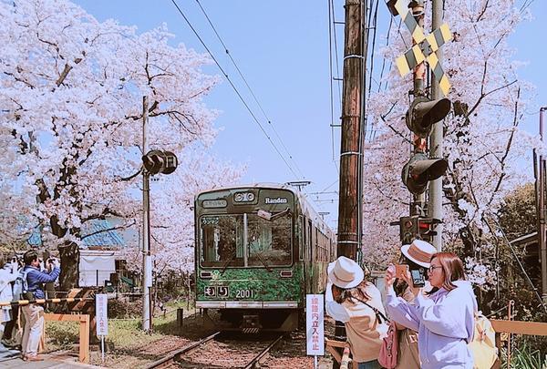 鳴滝駅の写真・動画_image_196918