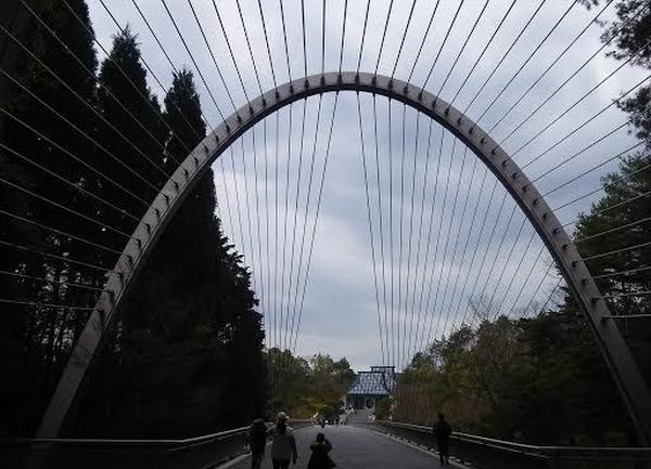 今度はつり橋!