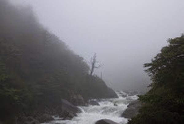 白谷雲水峡の写真・動画_image_19455