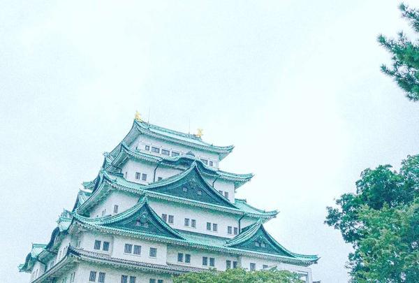 名古屋城の写真・動画_image_643726