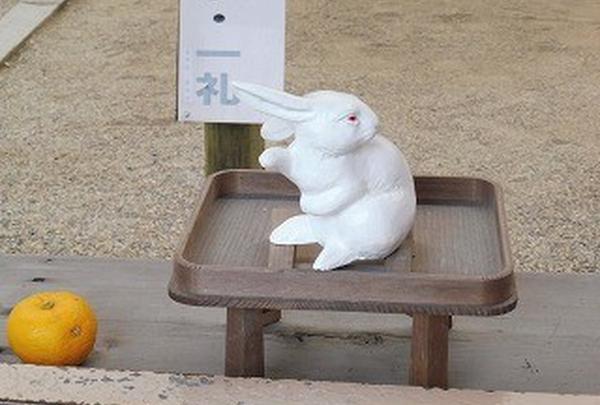 ウサギさんに導かれて…!