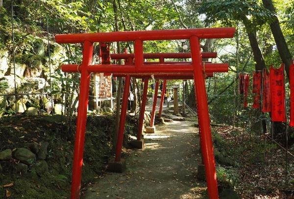狸福神社の写真・動画_image_127139