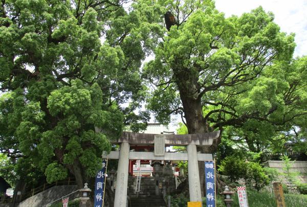 北岡神社社務所の写真・動画_image_136521