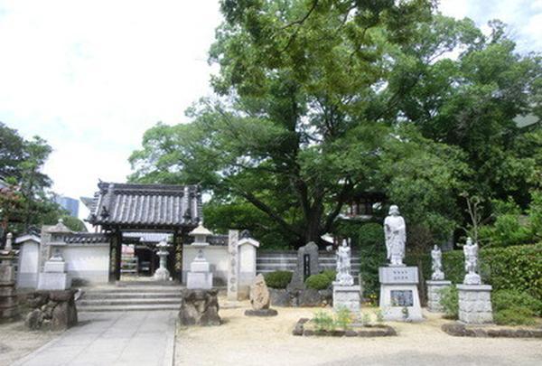 大聖勝軍寺の写真・動画_image_165511