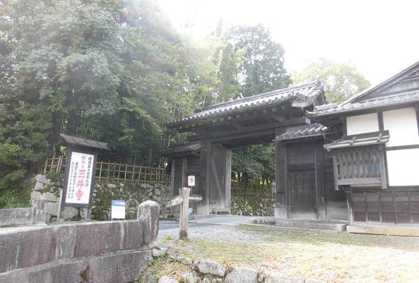 園城寺の写真・動画_image_271533