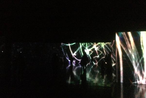 追われるカラス、追うカラスも追われるカラス、そして分割された視点 ‒ Light in Dark