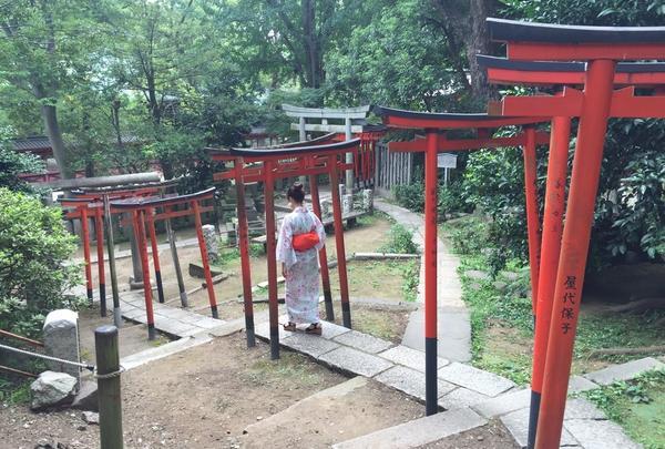 乙女稲荷神社の写真・動画_image_200860