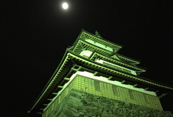 高島城の写真・動画_image_208567