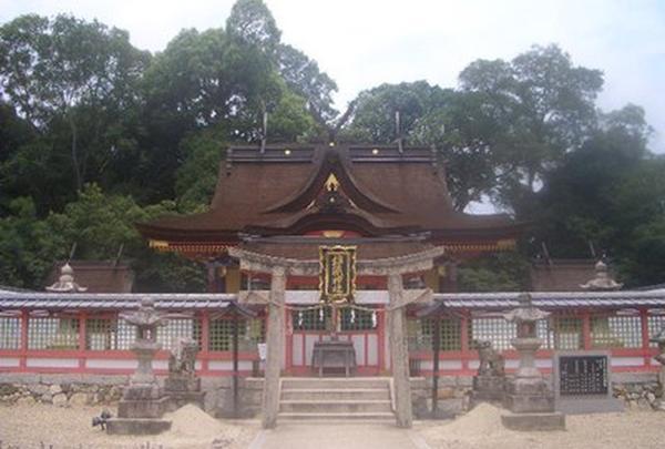 錦織神社の写真・動画_image_317050