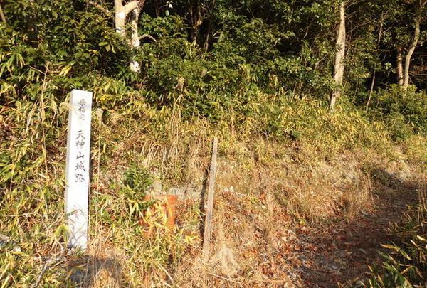 天神山城の写真・動画_image_711610