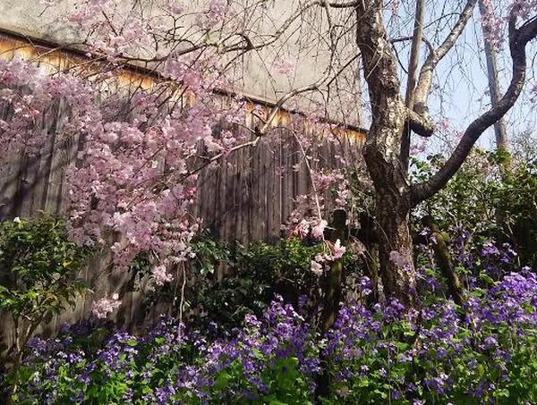 季節の花や木々も美しい