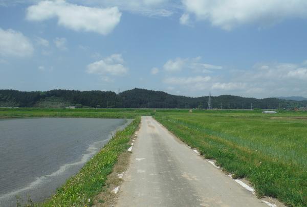剣神社の写真・動画_image_134708