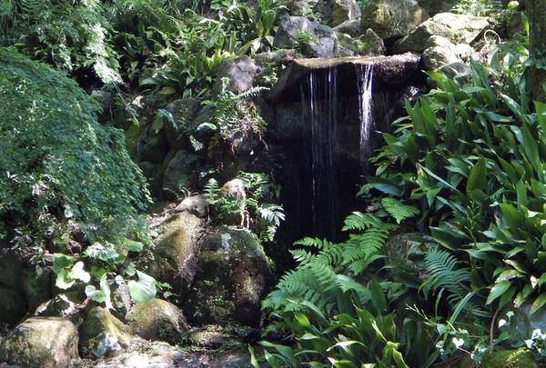 小さいながらも涼やかな滝が…