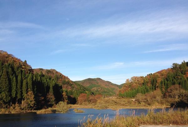 中津ダムの写真・動画_image_35515