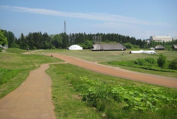 三内丸山遺跡の写真・動画_image_191177