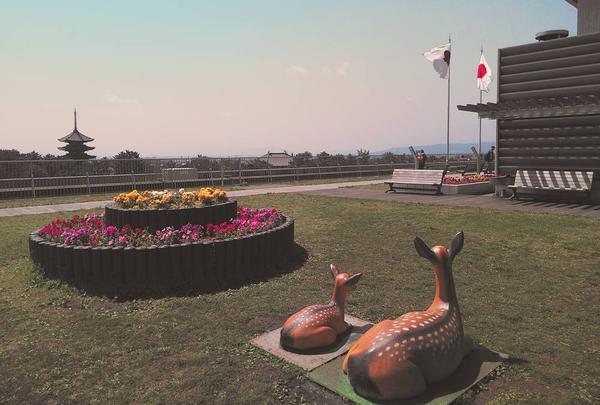 奈良県庁舎 屋上広場