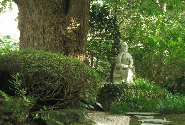 竹でない場所も風情あります。
