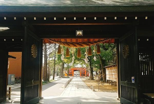 葛飾八幡宮の写真・動画_image_188484