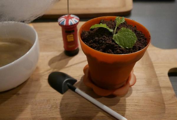 鉢植えデザート