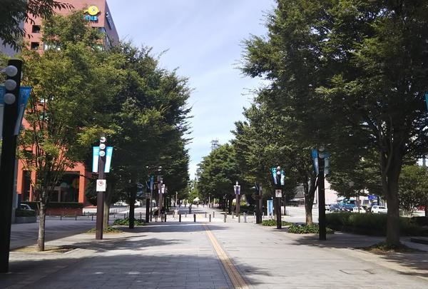 富山駅の写真・動画_image_216393