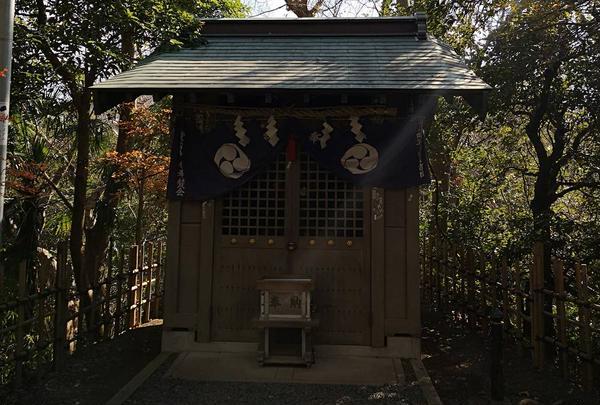 柿田川湧水の写真・動画_image_247325