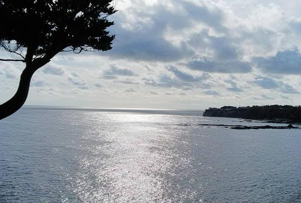 遊歩道も海が近くて楽しいです(^○^)