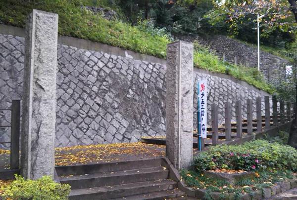王子神社(王子権現)の写真・動画_image_332244
