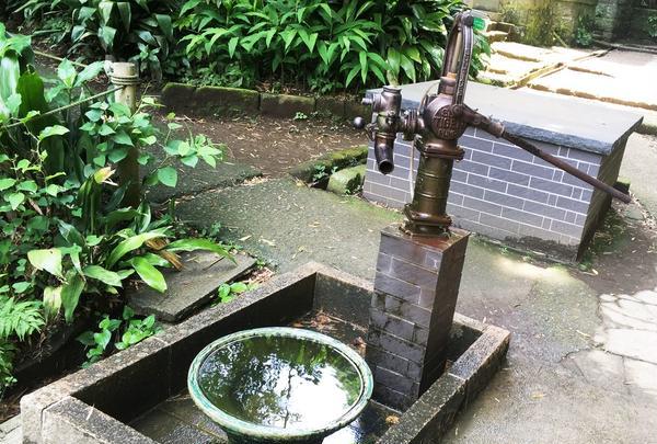 昔懐かしい手押しポンプ井戸も!