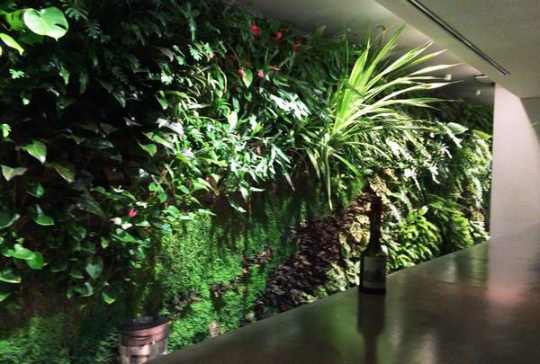 パトリック・ブランの壁面緑化アート