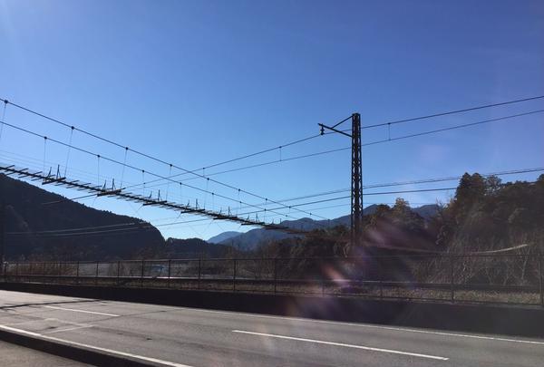 塩郷の吊り橋の写真・動画_image_58491