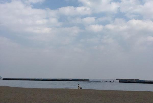 渚親水公園・ムーンテラスの写真・動画_image_65332