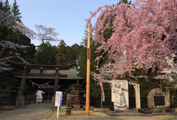 蒲生神社の写真・動画_image_71033