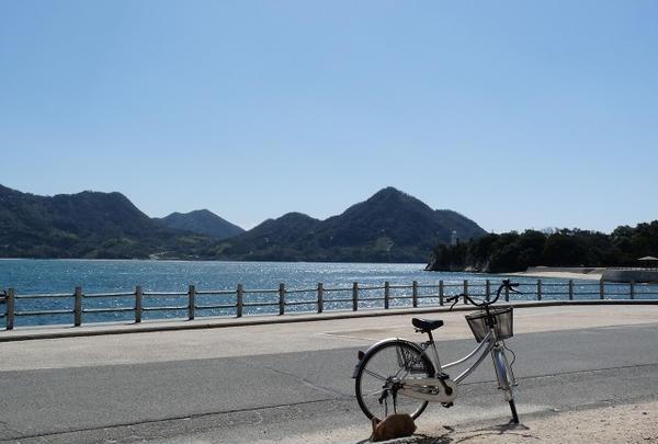 大久野島サイクリングロード