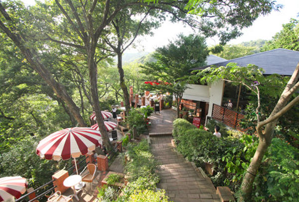 CafeTerrace樹ガーデン