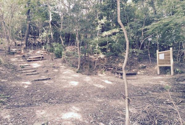 生駒台みんなの森の写真・動画_image_140342