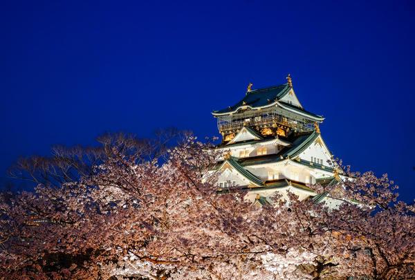 【花見スポット】大阪城公園