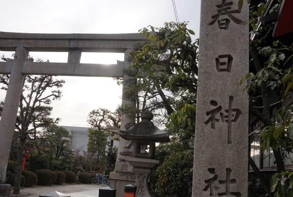 春日神社の写真・動画_image_171752