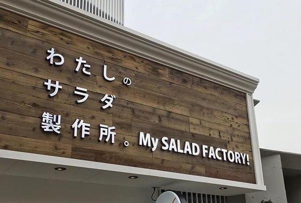 【閉店】わたしのサラダ製作所。マイサラダファクトリー 吉祥寺店の写真・動画_image_175402