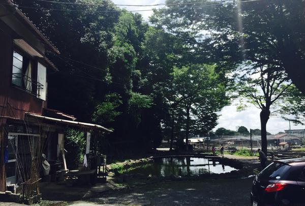 多摩川養殖つり堀場