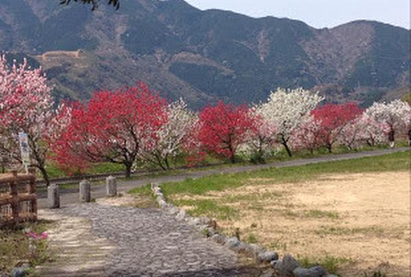 関市武芸川温泉ゆとりの湯